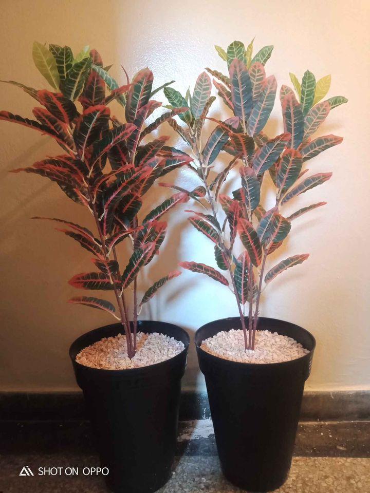 Les plante artificelle
